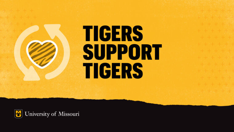 Tigers Support Tigers text on a gold background. Striped heart surrounded by arrows.