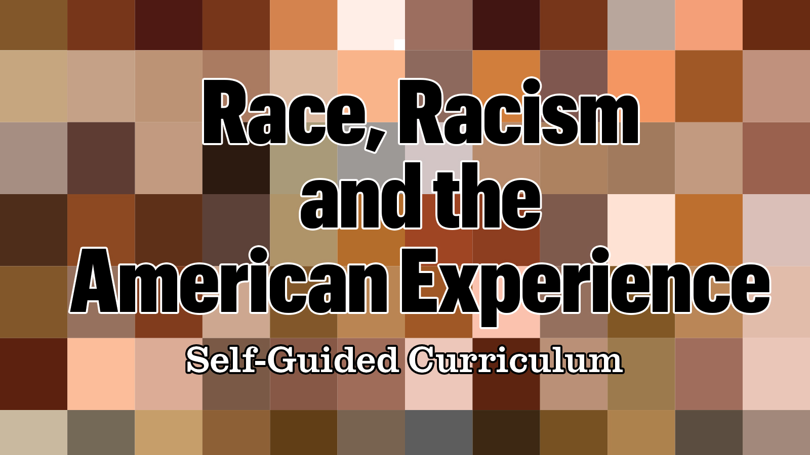 Race, Racism and the American Experience: Self-Guided Curriculum text on a checkerboard of skin-tone color swatches