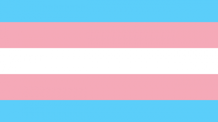 Trans flag with light blue outer, pink second, white center stripes